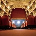 Yeovil | Theatre Shows