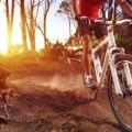 Giant Cycle Club