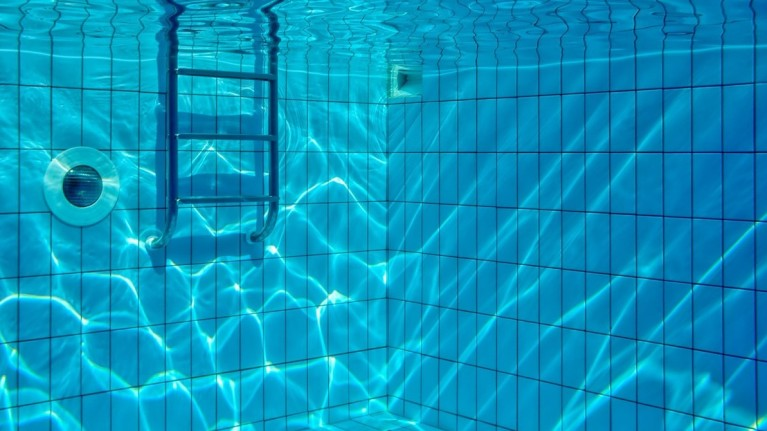 Telford & District Area Association Free Swimming Sessions