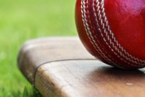 Somerset Cricket 2020