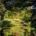 Wakehurst, RBG Kew's wild botanic garden