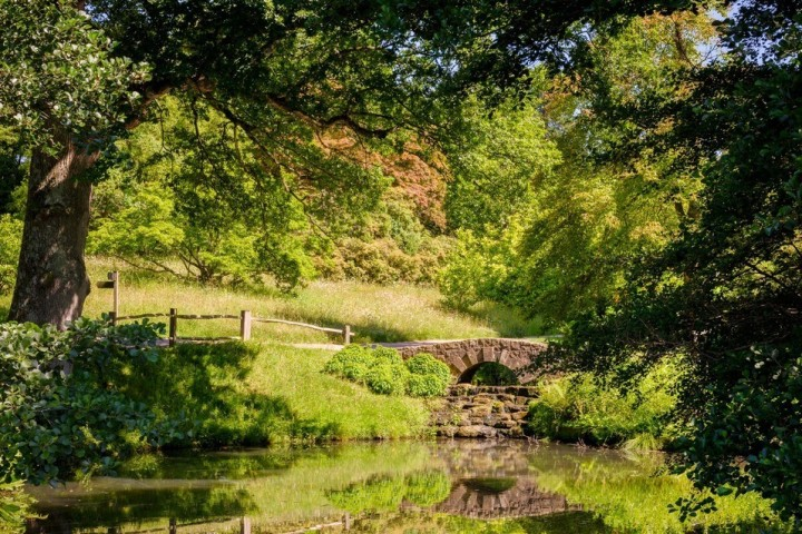 A small bridge crosses a small stream, the grass is bright green and there are lots of trees