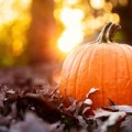 Peterborough | Spooky Tales from Stamford Town Tours Cashback