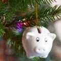Christmas Cashback Subsidy | Plymouth