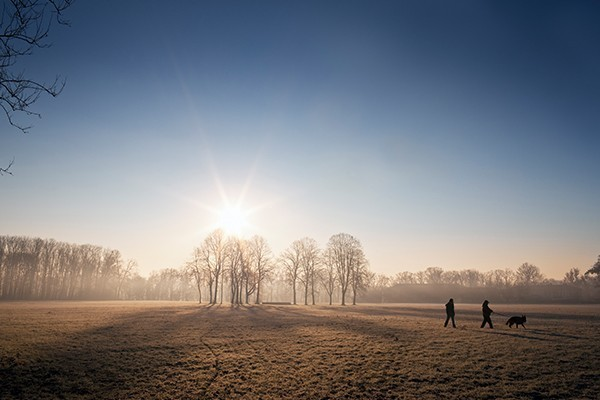 The winter sun rises behind a small copse of trees. Two people and a dog walk over frosty grass