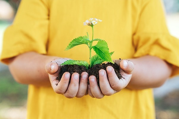 Child with a handful of soil with a plant growing out of it