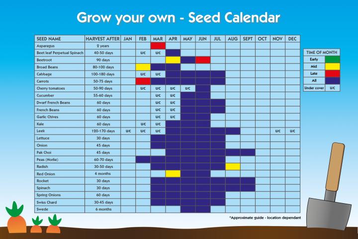 Seed Calendar for vegetables