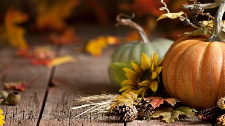 Malvern Autumn Show   Malvern & Worcester